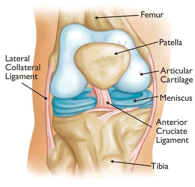 knee surgery boca raton